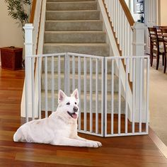 Doggie Divider Room Divider Pet Barrier Approx 25 Inches High Indoor Fence Dog Gate
