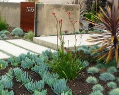 San Diego Landscape Design, Pictures, Remodel, Decor and Ideas - page 5