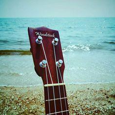 Auryn, Woodstock, Guitars, Guitar