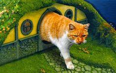 Nice house, kitty!