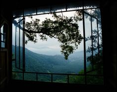 View from our Treehouse Earth Lodge Guatemala by LinkasPhotoStore, $95.00