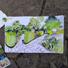 """Lis Watkins on Instagram: """"Drawing in the Walled Garden at Brockwell Park yesterday. I took some 'in progress' shots, which you can see if you swipe along. Made with…"""" Walled Garden, Take My, Illustrators, Shots, Watercolor, Canning, Park, Drawings, Artist"""