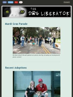 #Mardi #Gras #Parade #Deland and New Available for Adoption!  #GreatRescue #Dogs