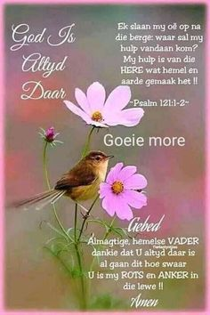Psalm 121, Psalms, Goeie More, Afrikaans Quotes, Morning Greetings Quotes, Special Quotes, Good Morning Wishes, Words, Scriptures