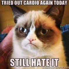 Still Hate Cardio