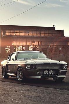 Classic Beauty~