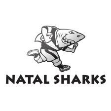 Durbs - home of the sharks rugby team