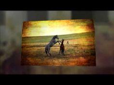 velmi silná očišťující a uvolňující mantra Om Namah Shivaya - www.budstastny.cz - YouTube