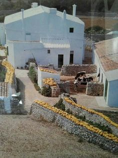 Torrellonet vell. Menorca