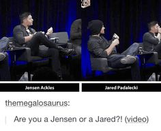 I think everyone's a Jared xD I think that's why we love him, because he's not afraid to be a dork. Dork one minute, sex on legs in another. Don't objectify him. Oh well.