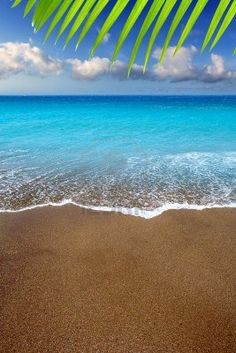 Canary Islands brown sand beach and tropical turquoise water... World Class - Most Exclusive... http://biguseof.com/travel