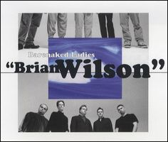 "For Sale - Barenaked Ladies Brian Wilson Germany Promo  CD single (CD5 / 5"") - See this and 250,000 other rare & vintage vinyl records, singles, LPs & CDs at http://991.com"
