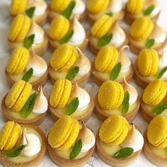 Lovely mini tart with delicious macaron Would you like to try one? - Learn how to bake with Small Desserts, Gourmet Desserts, Fancy Desserts, Dessert Recipes, Yellow Desserts, Lemon Desserts, Plated Desserts, Mini Lemon Tarts, Mini Tart