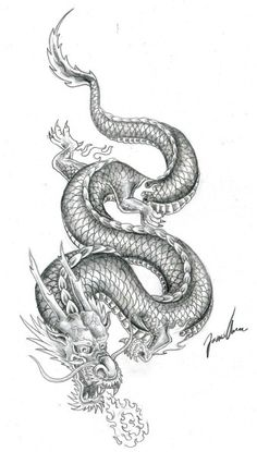 Chinese dragon tattoo I want on top of my left arm. But I want it redesigned.