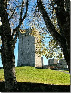 château de Montalegre (Portugal)