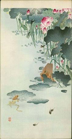 Ohara Koson Japanese Woodblock Print - Frog and Tadpoles