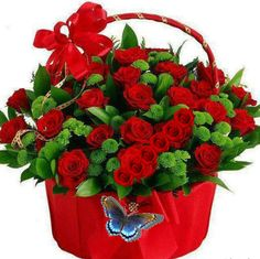 Red roses & green basket of flowers Bride Flowers, Flowers Nature, Beautiful Flowers, Rose Flower Wallpaper, Love Wallpaper, My Flower, Flower Vases, Good Morning Gift, Rose Basket