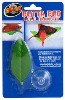 In the wild betta fish live in shallow waters, so they often have a place near to the top of the water's surface to rest. The Betta Bed Leaf Hammock compromises of a large leaf and suction pad which can be stuck to the side of the aquarium, just a few inches from the top of the surface. It is designed to support your betta as he chills out on his new hammock – oh he will think he's sooo cool!