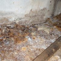 how to fix a crawl space