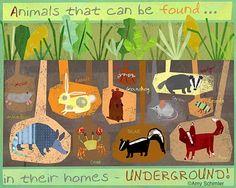Underground animals = use large piece of felt and add pieces