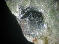 Hagendorfite, NaCaMn2+Fe 2 2+(PO4) 3, Palermo Mine, N. Groton, NH, USA. 2.5 mm green-black stubby-prismatic hagendorfite crystal in ludlamite
