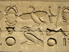 """Hieroglyphic relief on the outer wall of the structure which houses the """"Hall of the Ennead"""" and """"The Sanctuary."""" Ancient Egyptian, Greco-Roman period, 304 BC - 395 AD. Dendera Temple, Egypt."""