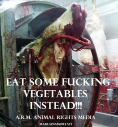 you can no longer distance your food from the suffering and violence from where it came~ goVegan~