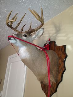 (elf on the shelf idea). haha i found this funny, this is something my mom would have done to decorate the deer.