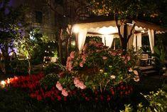 CAFE LATINO SORRENTO - Menu, Prices, Restaurant Reviews & Reservations - Tripadvisor Sorrento Italia, Kingston Upon Thames, Romantic Dinners, Beautiful Gardens, Brighton, Latina, Trip Advisor, Menu, Menu Board Design