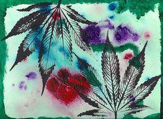 Cannabis Counterbalance - 2013