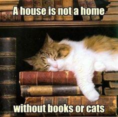"""""""Uma casa não é um lar sem livros ou gatos."""""""