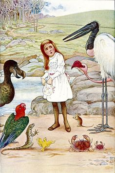 Alice's Illustrated Adventures In Wonderland: Chapter 3 ~ A Caucus-Race And A Long Tale