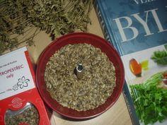 Ostropestřec mariánský Korn, How To Dry Basil, Herbs, Herb, Medicinal Plants