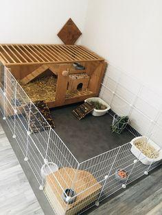 Indoor Rabbit House, Rabbit Hutch Indoor, Indoor Rabbit Cage, House Rabbit, Pet Rabbit, Pet Bunny Rabbits, Diy Bunny Cage, Bunny Cages, Rabbit Cages