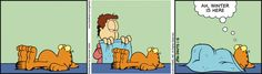 Garfield senses the changes in season from Autumn to Winter. #funnycartoon #cats #nap