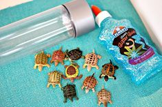 Swimming Turtles Discovery Bottle Inspired by Turtle Splash book - great earth day project