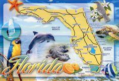 Florida - Vereinigte Staaten von Amerika / United States of America / USA