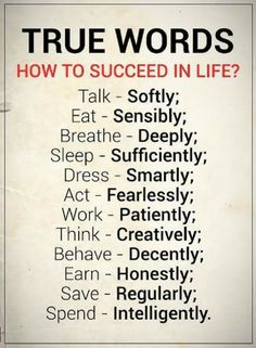 Success Quotes How to Succeed in Life True Words talk softly, eat sensibly, breathe deeply, sleep sufficiently, dress smartly Inspirational Quotes About Success, Meaningful Quotes, Success Quotes, Positive Quotes, Motivational Quotes, Positive Psychology, Wise Quotes, Words Quotes, Quotes To Live By