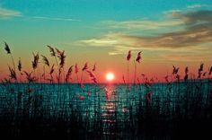Pinteretでの僕のお気に入りは、圧倒的に美しい自然の写真をpinすること。