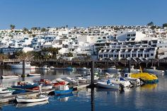 Fishing port, Puerto del Carmen, Lanzarote, Canary Islands, Spain, Europe