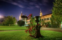 Roses in the night - TomFear Cute Pictures, Beautiful Pictures, Nature Photos, Beautiful Places, Scenery, Castle, Mansions, Architecture, Night