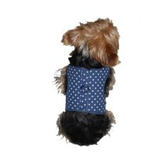Anima Blue and White Polka Dot Harness with Leash Set XSmall >>> Be sure to check out this awesome product.