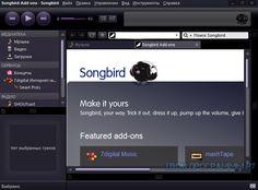 #Songbird — бесплатное многофункциональное приложение, удачно сочетающее в себе функции настольного веб-навигатора и мультимедийного плеера. https://tvoiprogrammy.ru/songbird/