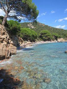 Palombaggia en Corse. Crique, verdure et eau turquoise une nouvelle fois. Endroit magnifique et qui donne envie ! Au vu de toutes ces photos de la Corse il serait temps de réserver notre séjour et d'aller faire un petit voyage en Corse ! #vacances #Corse