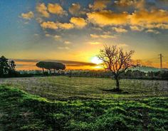 #Repost  Thanks! @ivan_trail21  Ras ras un divendres chofff  #raconsde_catalunya #raconsde_girona #world_natural #ig_photo_world #fotopremios #_fotopremios #naturaleza_spain #naturaleza_catalunya #catalunya_hdr #catalunya_alnatural #trailrunning #estaes_cielos #estaes_natura #sunrise_sunset_badalona #sunset_sky #running #discover_catalonia #calongesantantoni #palamosonline #igerspalamos #total_catalunya #total_sky