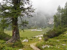 Paganella, la Malga Spora tra le Dolomiti, Trentino http://www.sphimmstrip.com/2014/08/paganella-un-weekend-in-trentino-tra-i-monti-e-le-mucche.html