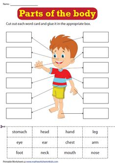 Preschool Cutting Practice, Color Worksheets For Preschool, English Activities For Kids, English Worksheets For Kindergarten, Learning English For Kids, English Lessons For Kids, Body Preschool, Preschool Writing, Preschool Learning Activities