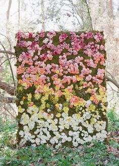 moss backdrop covered in fresh blooms