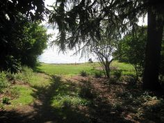 Howell Park - seattle's naked beach Location: Madrona/Madison Park Address: 1740 E. Howell Pl. Acreage: 0.9 Roughly halfway between Madrona and Madison Park, turn off of Lake Washington Boulevard onto what looks like a short dead-end street   hidden waterfront park has no easy access (and unfortunately is not wheelchair- or stroller-friendly).  follow the little trail to a flat lawn right on the waterfront of Lake Washington surrounded by multimillion-dollar homes.