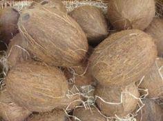 Naturalna medycyna - 10 Sprawdzonych Zdrowotnych Właściwości Oleju Kokosowego